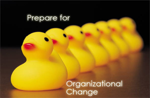 Ducks In A Row - Organizational Change 2013-12-02